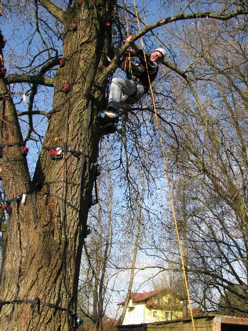 Vertrauen gewinnen beim Monkey-Climbing und Abseilen