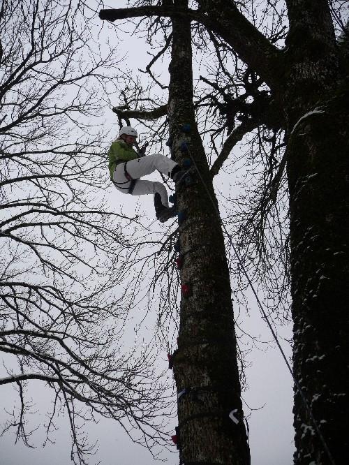 Abenteuerspielstation: Monkey-Climbing