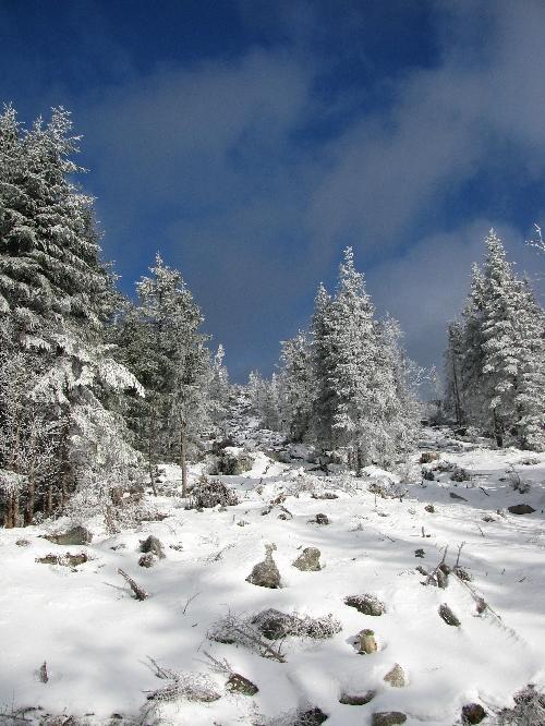 Schneeschuhtour Steinerness Meer, Dreisessel, Bayerischer Wald